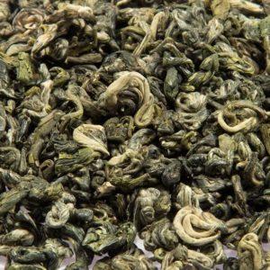 Gunagxi Green-snail